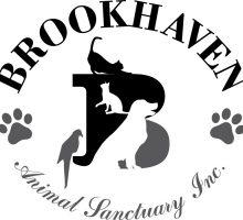 Brookhaven logo