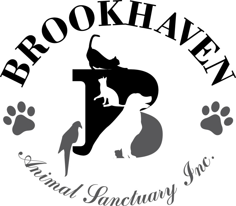 Brookhaven Animal Sanctuary - Annual Ft  Lauderdale Animal